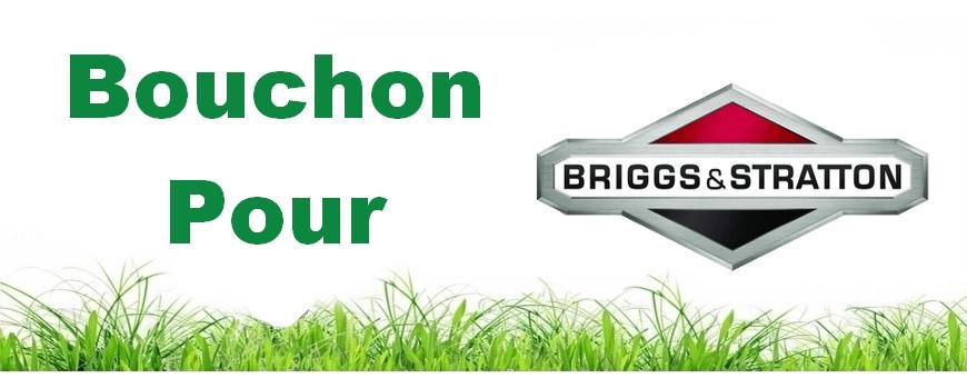 bouchons Briggs&Stratton